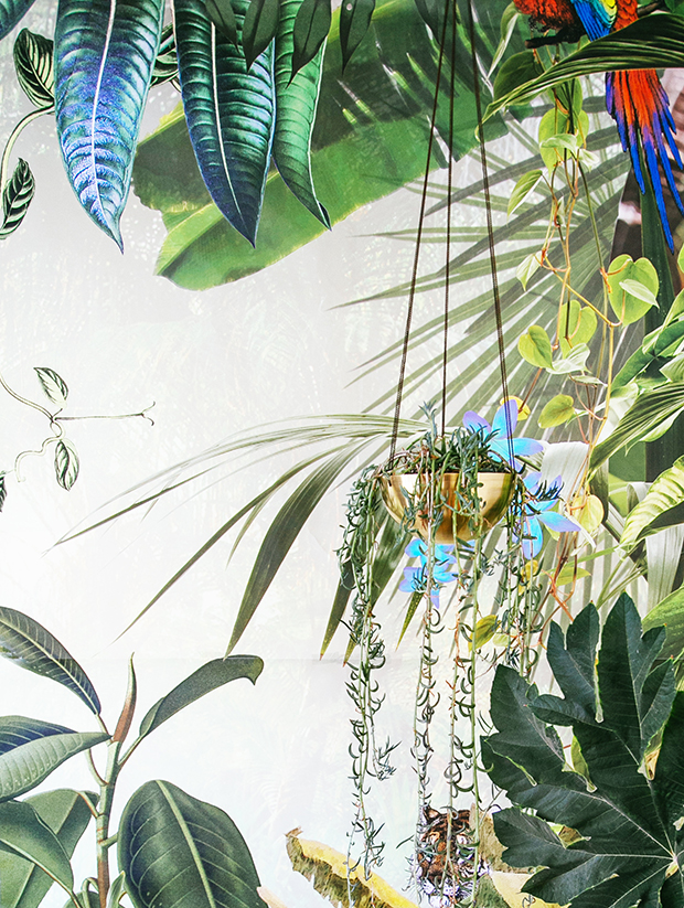 CloseUp-Into-The-Wild-Mural2