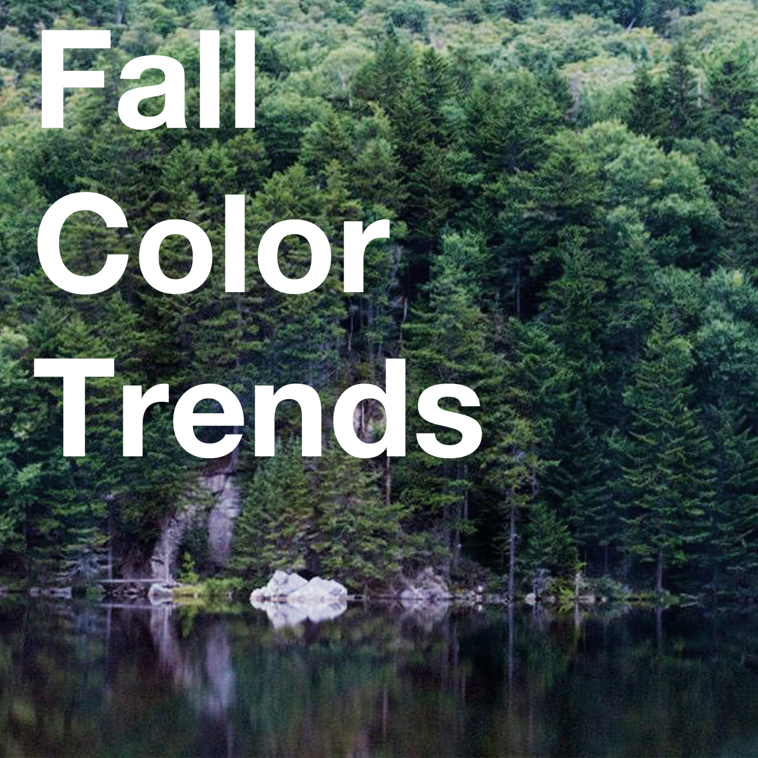 FeatureImageFallColors