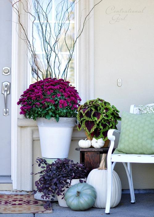 fall-porch-mums-centsational-girl