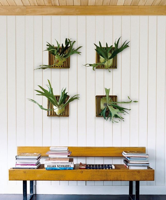 Ways To Decorate With Plants: 8 Unexpected Ways To Decorate With Plants